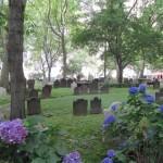 Churchyard (Small)