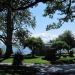 X.Cemetery (Small)